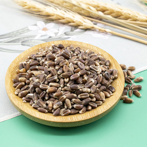 100% Pure Highest Quality delicious Agriculture Grain Rye