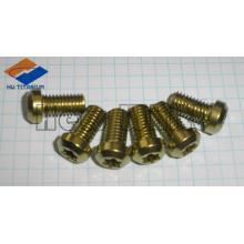 Gr5 titanium motor screw