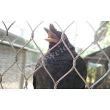 Zoo Mesh/Stainless Steel Bird Netting/Aviary Mesh