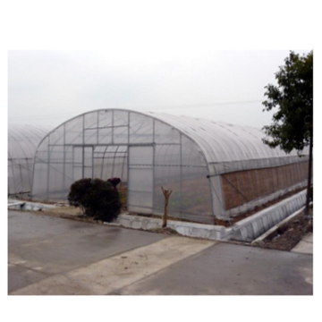 Tunnel Plastic Film Green House/Greenhouse for Vegetables Flowers