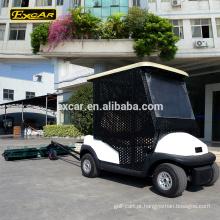 O carro elétrico do carrinho de golfe do seater do EXCAR 2 pegara o carro com o selecionador da bola de golfe