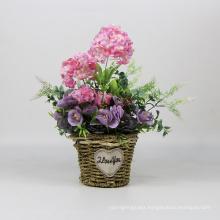 Romantic pastoral floral pink colourful flower pot plants