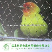Chicken Coop Drahtgeflecht