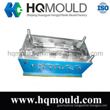 Molde de inyección de plástico molde/Auto parte