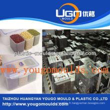 Zhejiang taizhou huangyan nourriture poisson fruit conteneur moulant yougo moule