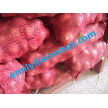 Frische rote Zwiebel verpackt mit 5/10 / 20kg Mesh Bag