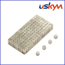 Ímãs do bloco do Neodymium N35 (F-006)