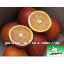 Verkaufe chinesischen Nabel orange, Blut, 15kg ctn Verpackung