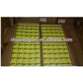 China fabricante profissional de isolamento térmico fitas de vidro de teflon