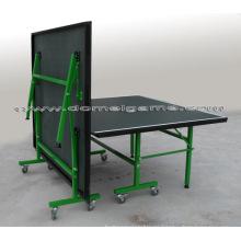 Mesa de tenis de mesa (DTT9027)