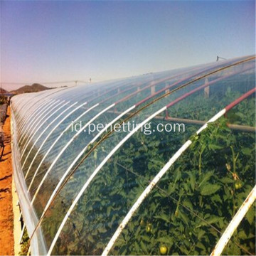 Film Plastik Multi-span Menutupi Light Tomato Greenhouse