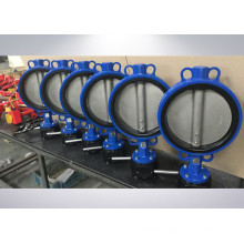 Super Duplex 1.4469 Disc Ductile Iron Butterfly Valve