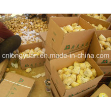 Shandong Origen Patata Fresca Nueva Temporada
