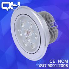 LED Bulbs DSC_8144