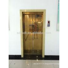 Luxueux ascenseur de passager sans pièce