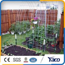 Panneau en treillis soudé galvanisé à chaud de haute qualité pour le décor de jardin