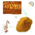 Harina de gluten de maíz Comida de proteína Comida de animal