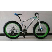 Bicicleta de la montaña del neumático de la grasa del marco de acero (FP-MTB-FAT03)