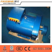 10KW 12.5KVA ST STC Brush Alternator