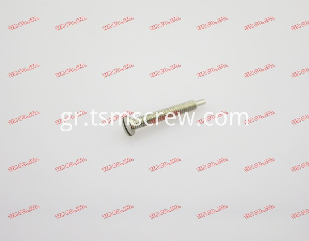 TSM Silver Self Tapping Screw-2