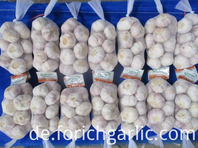 Fresh Garlic New Crop 2019