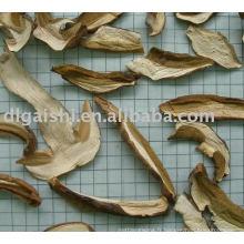 champignons séchés boletus edulis