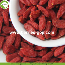 Atacado Granel Premium Low Pesticide Goji Berry