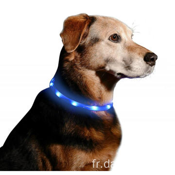 Collier de collier d'animal familier LED de sécurité rechargeable de nuit d'USB