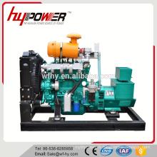 Générateur de gaz naturel pour 50kw