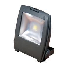 ES-80W LED Area Lights