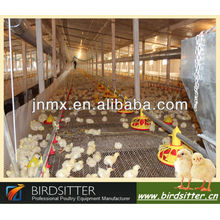 hottest sale broiler and breeder use chicken poultry shed design
