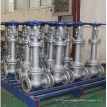 Gate valve extension