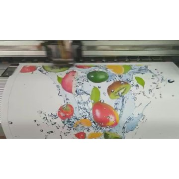 Eco Solvent Printing Canvas Polyester Inkjet Fabric Roll