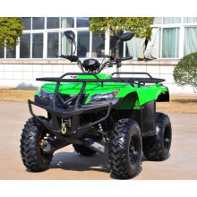 Electric Start Utility ATV 250cc off-Road Vehicle ATV (MDL GA009-3)