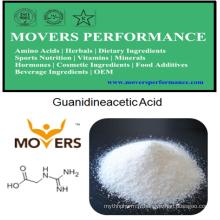 Nutrition humaine de haute qualité: acide guanidine-acétique