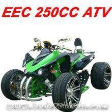 CUADRADO DEL ATV DE RACING 250CC (MC-388)
