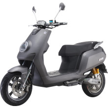 Scooter électrique de batterie Li-ion 1000w