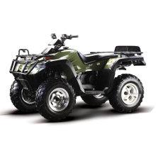 300cc quad-1