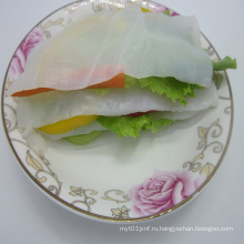 Чистая органическая коньячная паста лазанья для здоровой пищи