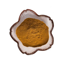 factory supply high quality agaricus blazei murille extract powder