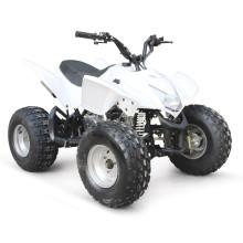 110CC ATV EPA RACING CHEAP QUAD