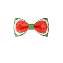 fruits printing cute neckbow bowtie for party