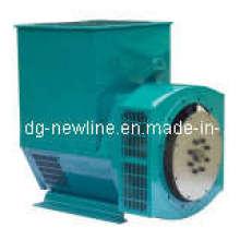 Brushless Lichtmaschine