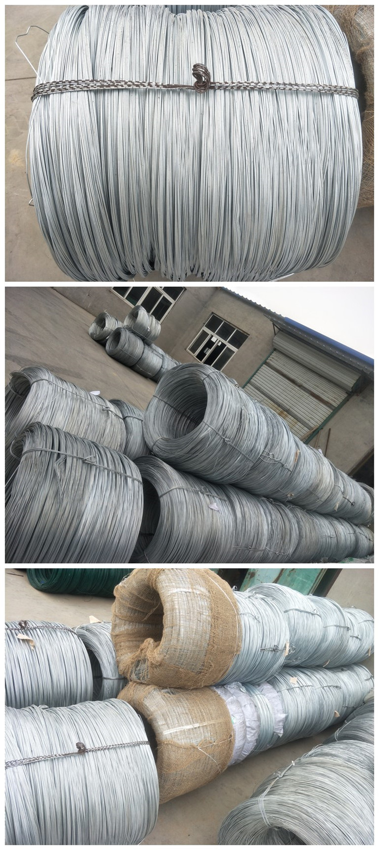 Galvanized Iron Wire50
