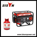 BISON (CHINA) Marca superior Potência de saída real LPG 4000Watts Gerador de metano do biogás