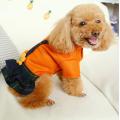 Dog Girl Dress Apparel for Female