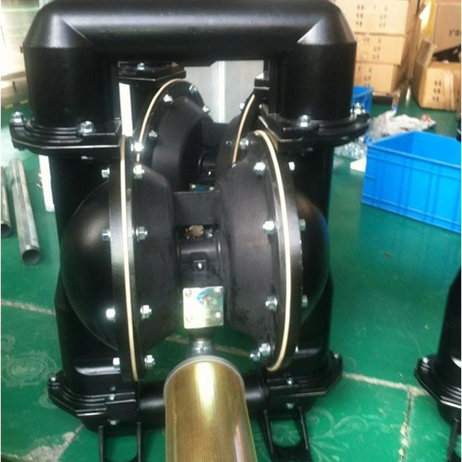 Diaphragm Pumps ARO Type (10)