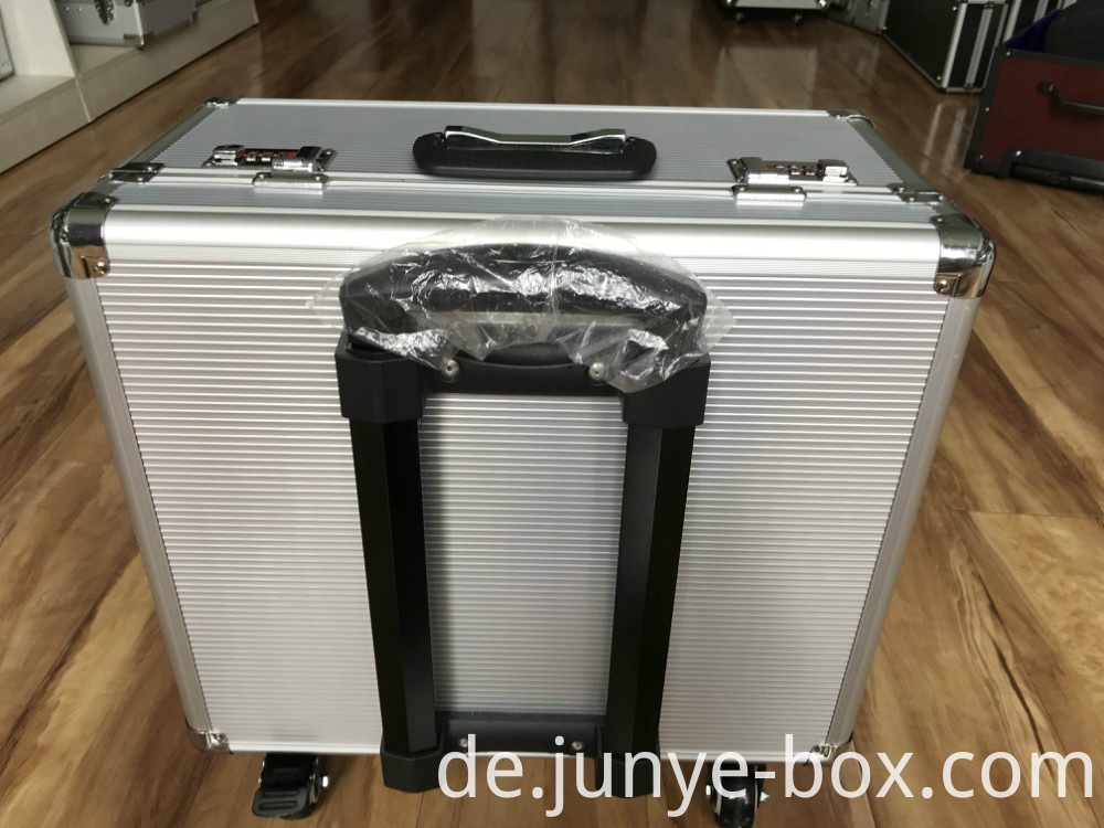 Travel Case with Handle
