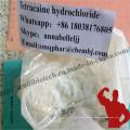 Anestésico local en polvo Tetracaína base para anestesia anti-dolor CAS 94-24-6