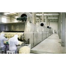 Multi Stage mesh Belt Dryer Equipment
